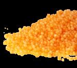 Prote-N zrna